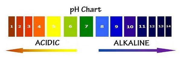 ph chart Measure pH Level